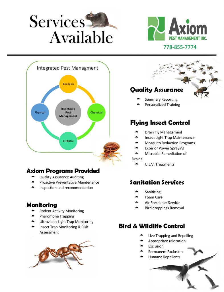commercial pest control fraser valley